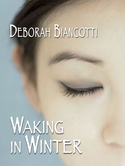 Waking in Winter cover