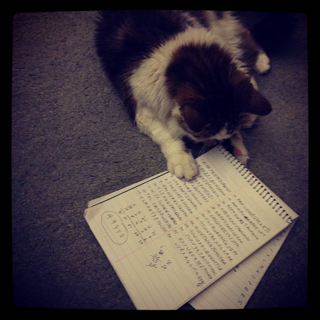 Sadie works on her ciphers