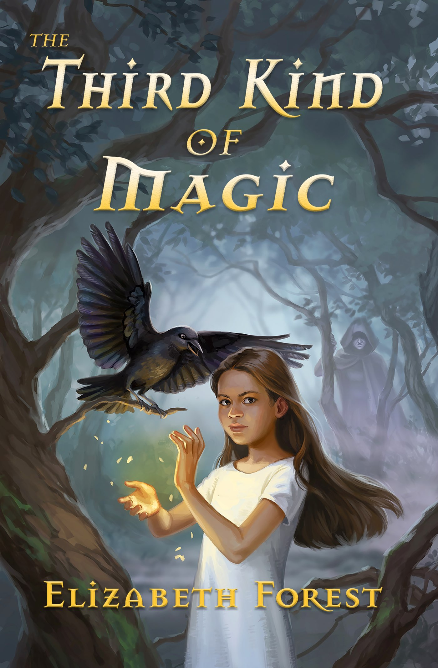 The Third Kind of Magic cover image